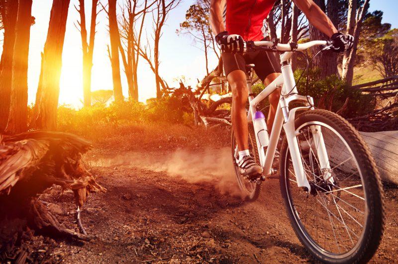 Przejażdżki rowerowe jako sposób na życie!